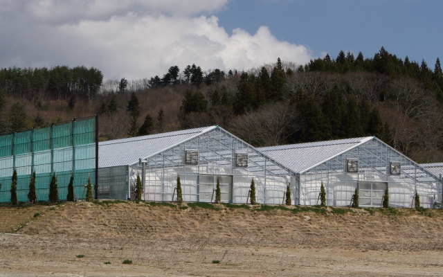大規模栽培施設