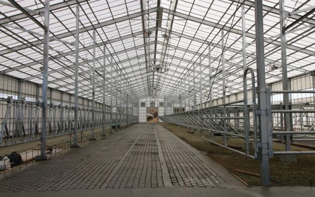 肉用牛生産施設